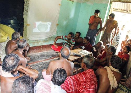 Farmers watch a video on disease control at a community video screening in Puri district, Odisha. Photo credit: Ashok Rai/CIMMYT