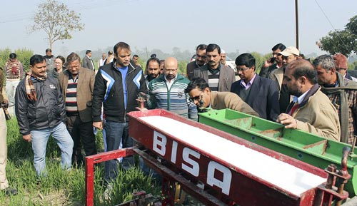 The Director of Agriculture (3rd from left) and the District Collector (2nd from right) view a demonstration of urea drilling in a standing wheat crop. Photo: Manish Kumar/CIMMYT