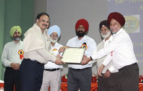 Felicitation of B.M. Prasanna during the 58th All India Coordinated Maize Workshop (from right to left: J.S. Sandhu, A.S. Khehra, Gurbachan Singh, B.S. Dhillon, B.M. Prasanna and H.S. Dhaliwal). Photos: J.S. Chasms.