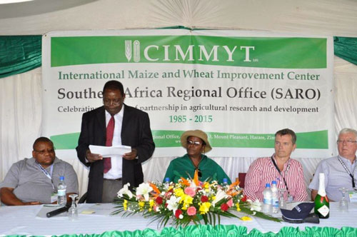Targeting increasing farm-level food security and productivity to mitigate the effects of climate risk and change: Through the SIMLESA Project, smallholder farmers practice sustainable intensification principles, such as zero or minimum tillage, maize–legume intercropping, and maize–legume rotations. In the photo, Mr. Ringson Chitsiko (standing), Permanent Secretary (PS), Ministry of Agriculture, Mechanisation and Irrigation Development, officially opens CIMMYT–SARO's 30th anniversary celebrations. On the extreme left is the International Livestock Research Institute's Representative for Southern Africa, Dr. Sikhalazo Dube. To the PS's left is the Principal Director in the Department of Research and Specialist Services, Mrs. Denisile Hikwa. Dr. Olaf Erenstein (in striped shirt), Director of CIMMYT's Socioeconomics Program; and partly in the picture is Dr. Eric Craswell, SIMLESA Project Steering Committee Member.