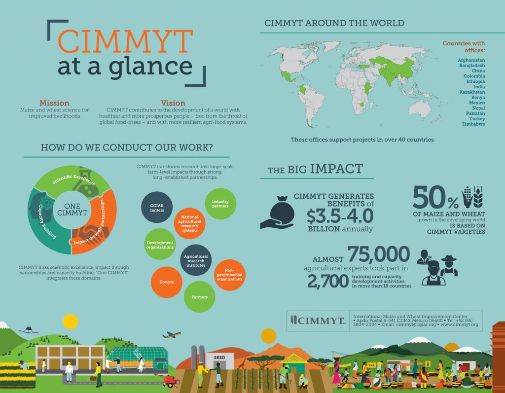 CIMMYT at a glance