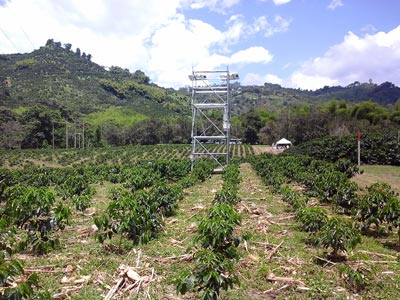 The Eddy Covariance microclimate station in Paraguaycito takes meteorological data needed to predict climate variability. Phots: Claudio Romero Perilla.