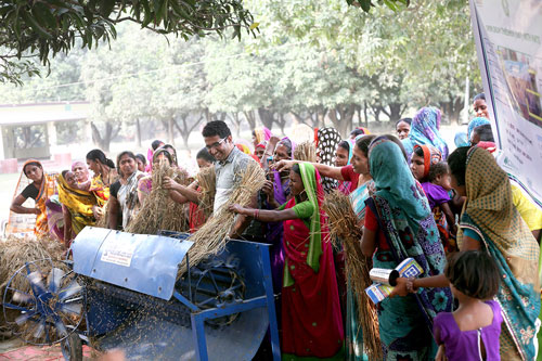 During a pilot program with members of the Kisan Sakhi Group in Muzzafarpur, Bihar, nearly 350 women farmers were trained to operate the diesel engine-powered, open-drum thresher. In this picture, Suryakanta Khandai (center), IRRI postharvest specialist, conducts a demonstration for two women's self-help groups interested in purchasing four machines next season. Photo: CSISA