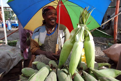 Nutritious Maize for Ethiopia