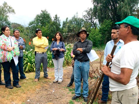 Course participants learning about the experiences of Mexican farmers who practice CA. Photo: Gabriela Ramírez