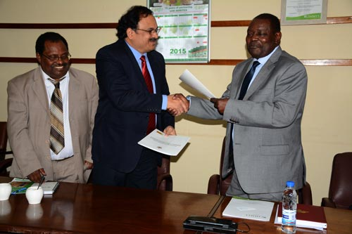 After the signing ceremony, BM Prasanna, MAIZE CRP Director, shakes hands with Ringson Chitsiko, the Permanent Secretary of Zimbabwe's Ministry of Agriculture. Looking on, is Mulugetta Mekuria, CIMMYT-SARO Regional Representative. Photo: Johnson Siamachira