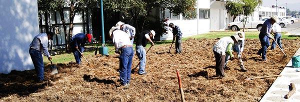 Todo el mundo muy ocupado en la preparación de la tierra. Foto: Denise Costich/CIMMYT