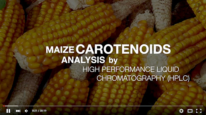 Want to learn more about carotenoid analysis? View the tutorial video in English here. For Spanish tutorials, view the lysine and tryptophan analysis videos.