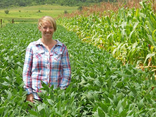 Cheesman in a direct-seeded maize-soybean rotation in Chavakadzi village, Shamva District, Zimbabwe. Photo: Christian Thierfelder