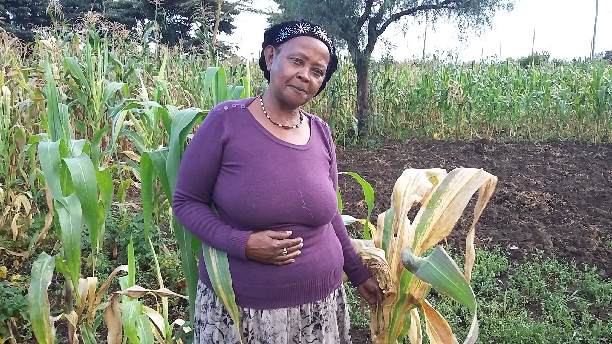 Purity has journeyed with women farmers in her village for last three years helping them access land to plant food for their families. Photo: B.Wawa/CIMMYT.