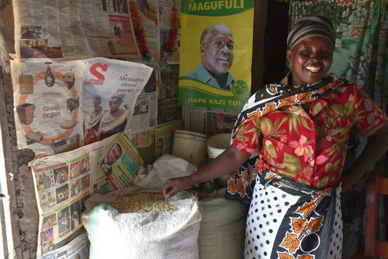 """New hybrid helps farmers beat drought in Tanzania. With seed of a maize hybrid developed by the Drought Tolerant Maize for Africa (DTMA) project and marketed by the company Meru Agro Tours and Consultant Limited, Valeria Pantaleo, a 47-year-old farmer and mother of four from Olkalili village, northern Tanzania, harvested enough grain from a 0.5-hectare plot in 2015 to feed her family and, with the surplus, to purchase an ox calf for plowing, despite the very poor rains that season. """"I got so much harvest and yet I planted this seed very late and with no fertilizer,"""" said Pantaleo, who was happy and surprised. """"I finally managed to buy a calf to replace my two oxen that died at the beginning of the year due to a strange disease."""" In 2015 Meru Agro sold 427 tons of seed of the hybrid, HB513, known locally as """"ngamia,"""" Kiswahili for """"camel,"""" in recognition of its resilience under dry conditions. The company plans to put more than 1,000 tons of seed on the market in 2016. To read more about how ngamia helped Olkalili farmers beat the drought, click here. (Photo credit: Brenda Wawa/CIMMYT)"""
