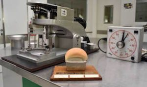 The honorary trophy of the International Gluten Workshop is shown in the wheat quality laboratory at the International Maize and Wheat Improvement Center (CIMMYT). The 13th workshop, which occurs every three years, will be hosted by CIMMYT in Mexico City in 2018. CIMMYT/Alfonso Cortez