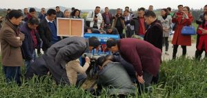 Chaosu explains the operation and results of the Chinese-made Turbo Happy Seeder to an enthusiastic group of researchers and farmers at a conservation agriculture demonstration site near Santai, Mianyang, Sichuan Province. Photo: Jack McHugh/ CIMMYT