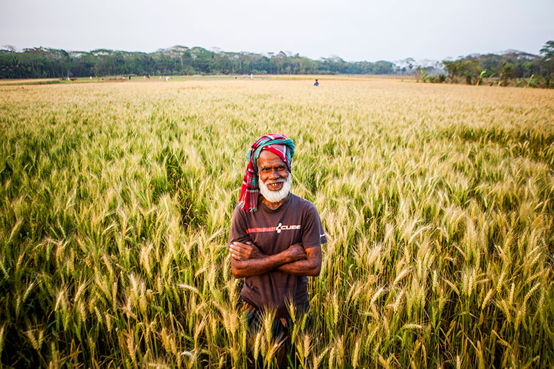 Farmer-surrounded-by-wheat