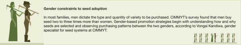 Gender in seed systems