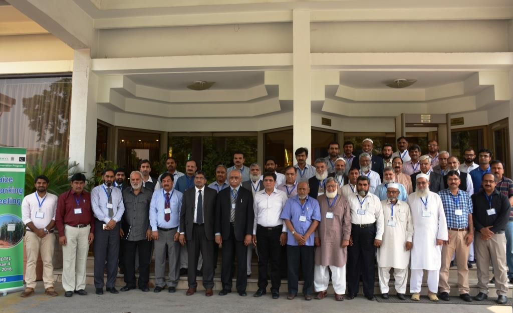 Participants in AIP's annual maize working group meeting, 10-11 May 2016, Islamabad, Pakistan. Photo: Amina Nasim Khan/CIMMYT