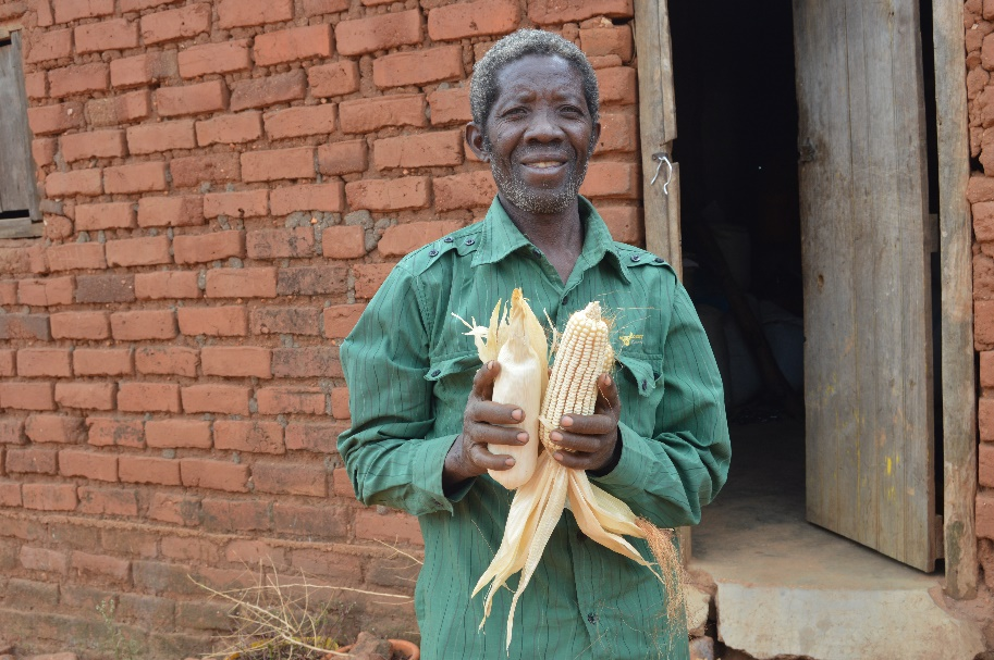 """Going forward, I will plant both local and drought-tolerant varieties for my family's consumption and sale, respectively. I sell the DT maize exclusively to the government and wholesalers, so I get a fair price. With this income, I can focus on other projects,"" Mwanza said. Photo: Kelah Kaimenyi/CIMMYT"