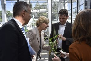 Bill & Melinda Gates Foundation CEO Susan Desmond-Hellmann toured CIMMYT headquarters in Mexico. Photo: Alfonso Cortes/ CIMMYT