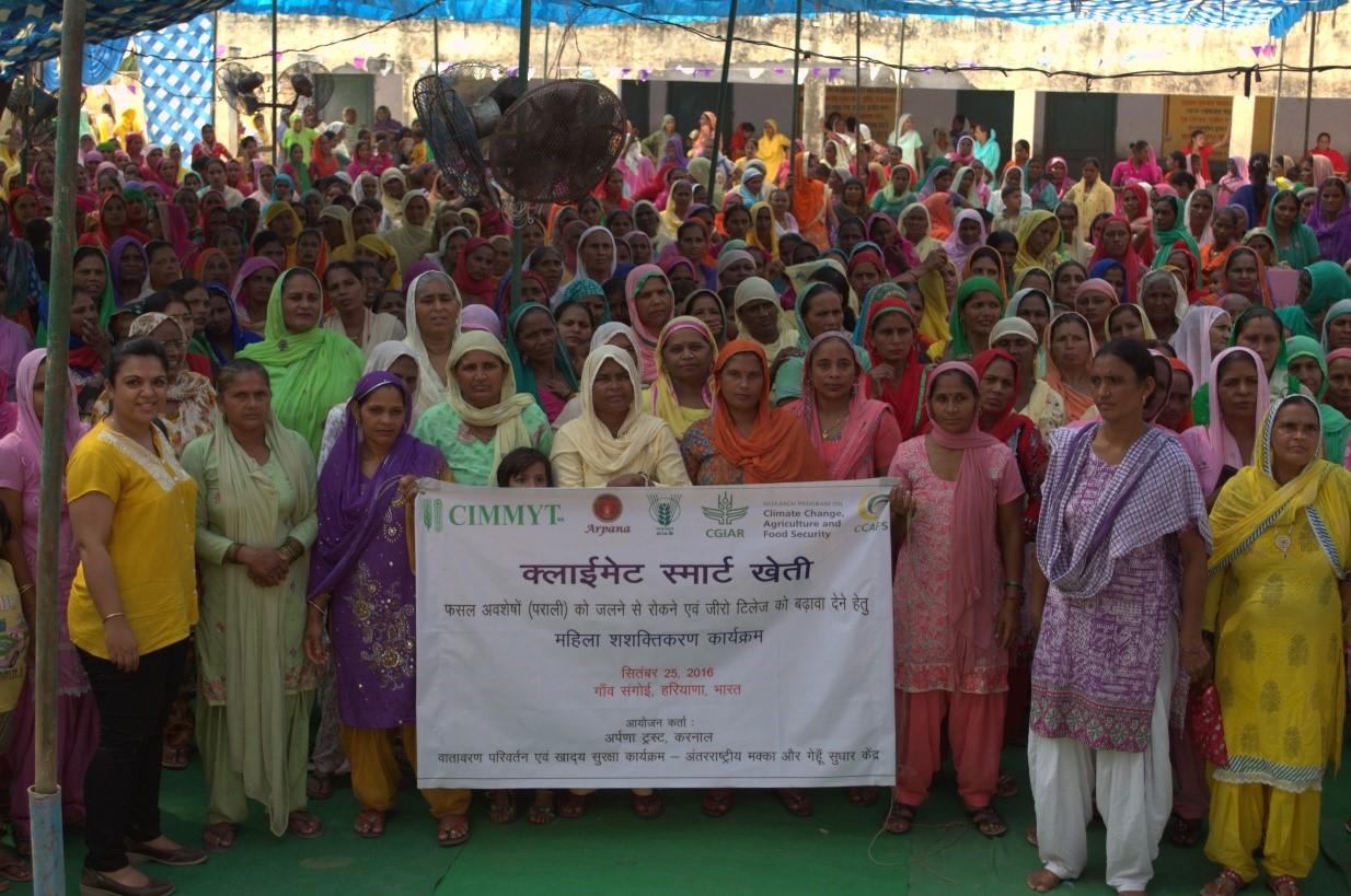 Farmers pledge to stop burning residues. Photo: L. Singh/CIMMYT