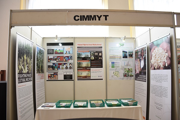 The CIMMYT booth at AFSC. Photo: K. Kaimenyi/CIMMYT