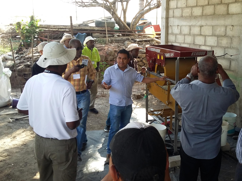 Haitian trainees in Mexico.
