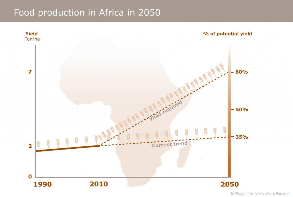 cereals_africa_trends_en-2