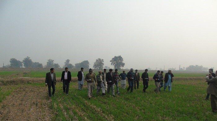 National partners observe the Green Seeker at work at Rice Research Institute, Kala Shah Kaku, and Punjab, Pakistan. Photo: Abdul Khalique