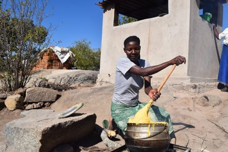 A farmer prepares maize porridge using Provitamin A maize. Photo: R.Lunduka/CIMMYT