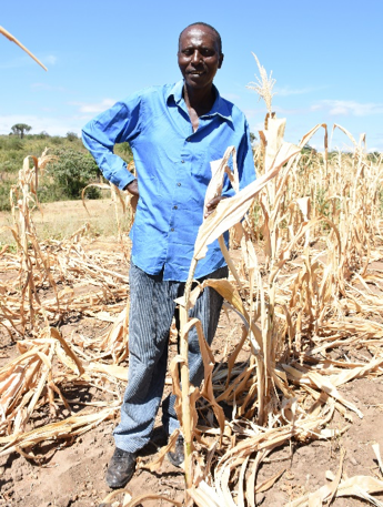 Muli Mutiso, one of the trial host farmers based in Wote, Kenya, doubled his harvest of maize and beans, respectively, by intercropping. Photo: K. Kaimenyi/CIMMYT