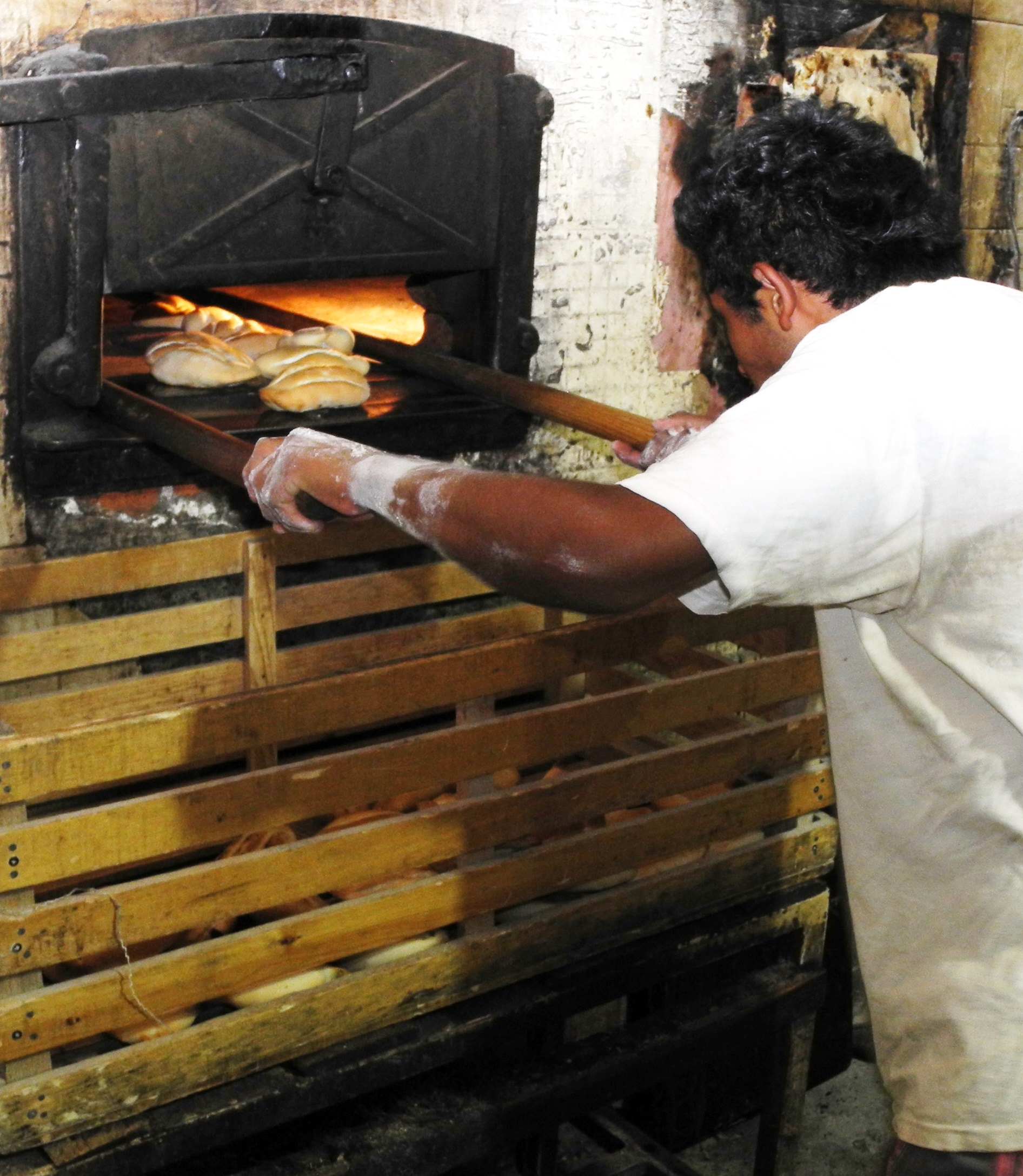 In addition to packaged commercial breads, small individual loaves prepared daily in neighborhood bakeries are standard fare in Mexico. Photo: Mike Listman/ CIMMYT