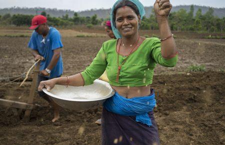 Farmer Kausila Chanara direct dry seeding rice in Ramghat, Surkhet, Nepal. Photo: P.Lowe/CIMMYT
