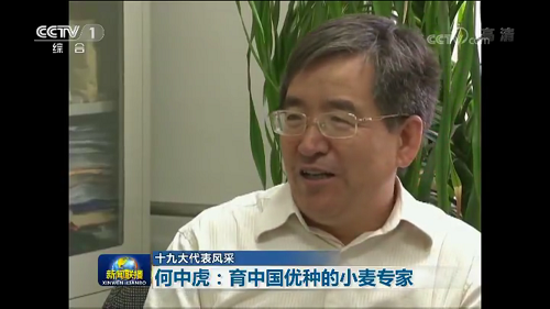 Zhonghu He on CCTV News.