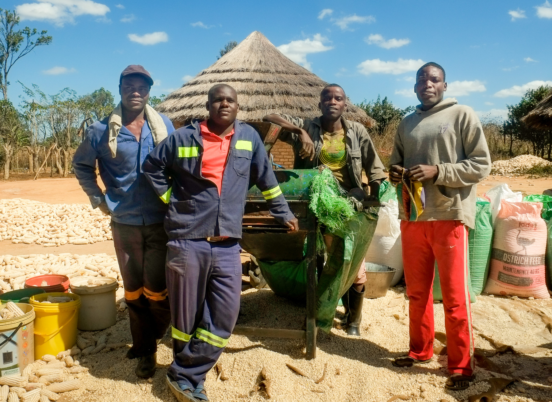After receiving training from CIMMYT, this group of young men started a small business offering mechanized agricultural services to smallholder farmers near their town in rural Zimbabwe. (Photo: Matthew O'Leary/CIMMYT)