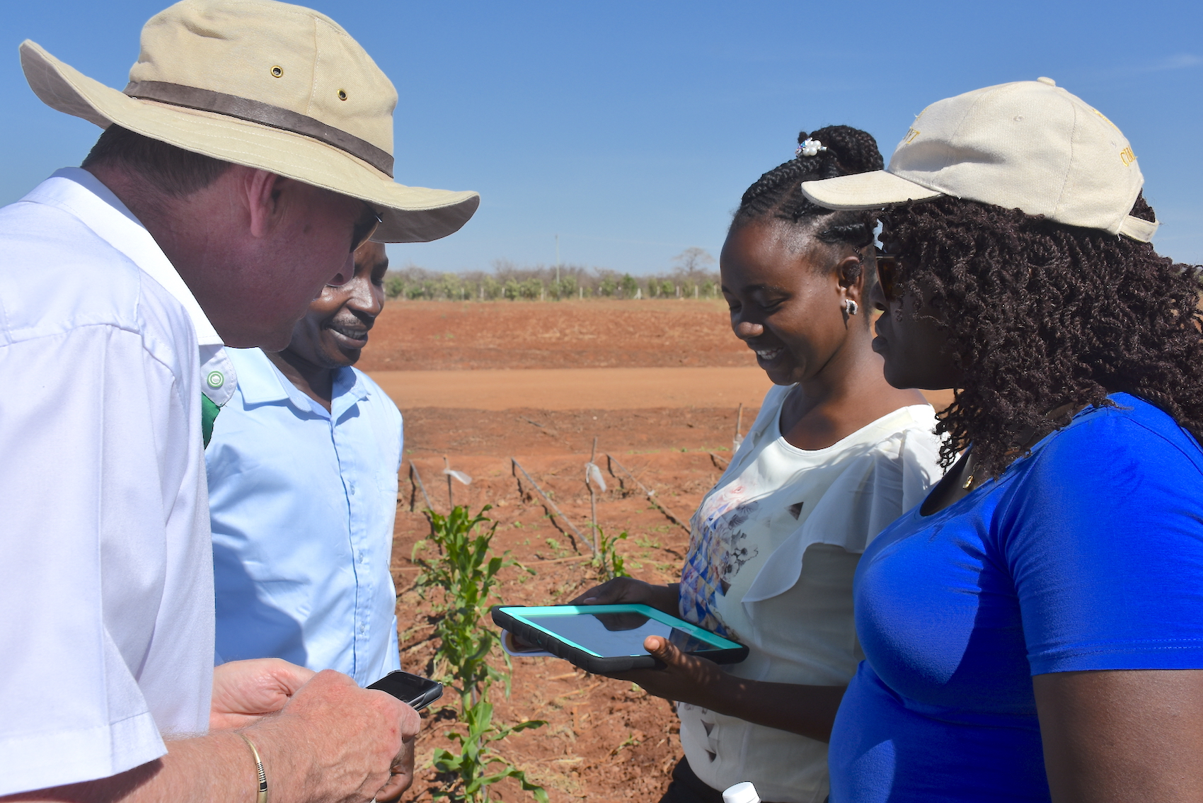 Partners test the SeedAssure app on a tablet during a field visit in Kiboko, Kenya. (Photo: Jerome Bossuet/CIMMYT)