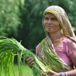 A woman in a climate-smart village in Bihar, India. (Photo: V.Reddy/ViDocs/CCAFS)