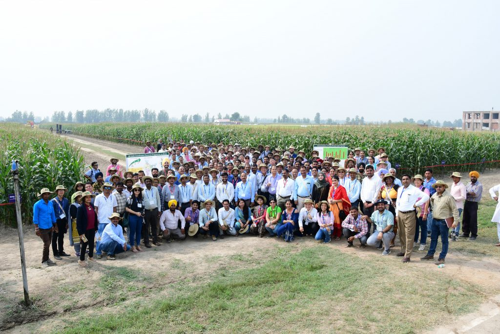 Conference participants pose for a group photo at the field visit site during the 13th Asian Maize Conference. (Photo: Manjit Singh/Punjab Agricultural University)